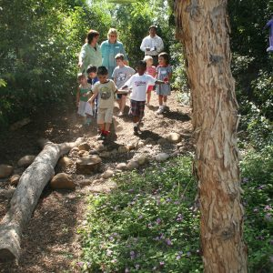 childrens-discovery-trail